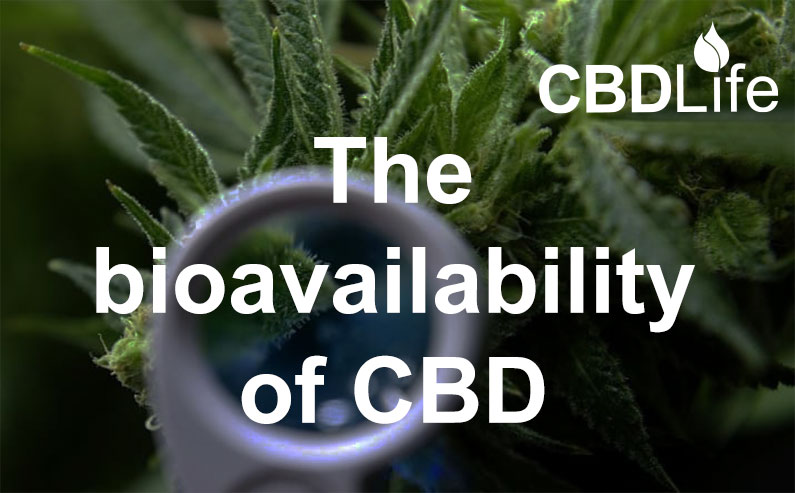 The bioavailability of CBD