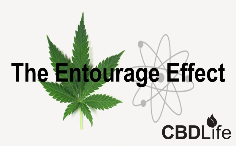 Read more about the article The Entourage Effect