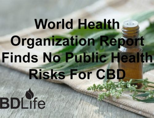 World Health Organization Report Finds No Public Health Risks For CBD