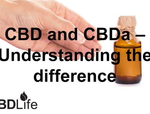 CBD and CBDa – Understanding the difference