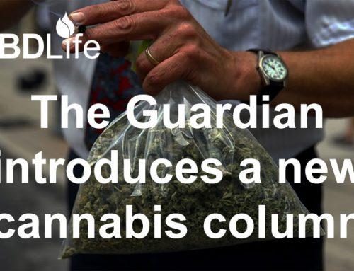 The Guardian introduces a new cannabis column