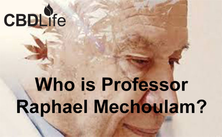 Who is Professor Raphael Mechoulam?