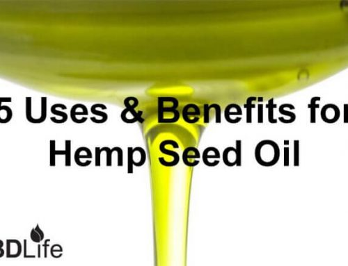 5 Uses & Benefits for  Hemp Seed Oil