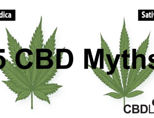 5 CBD Myths