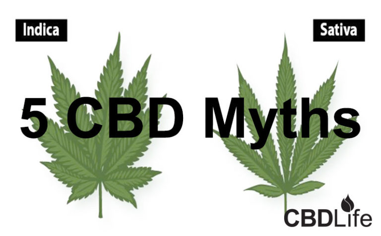 5 CBD Myths
