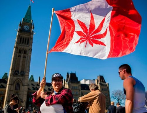 Canada becomes second country to legalise cannabis use