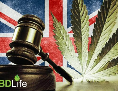 Cannabis Oil Legality Status in the UK 2018