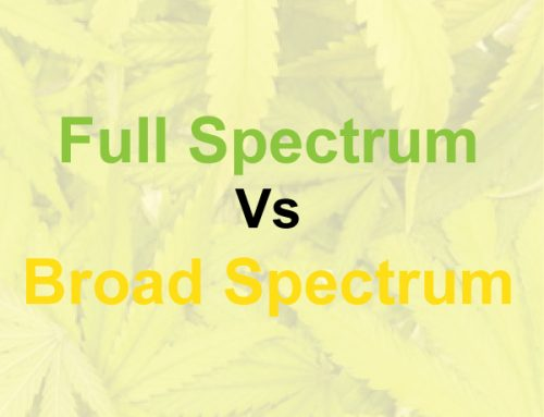 Full Spectrum Vs Broad Spectrum