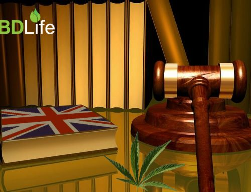 Will Cannabis ever be Legal in the UK?